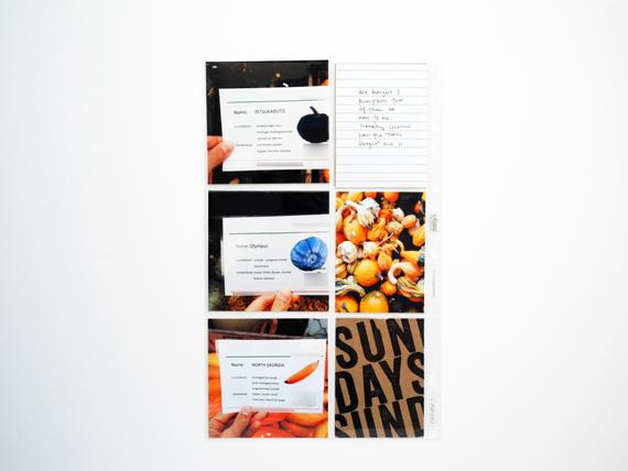 Create Share Love | ProjectLife September4g