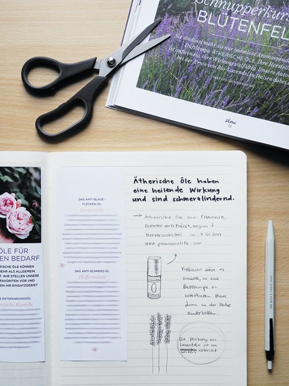 Create Share Love | Starting a New Notebook