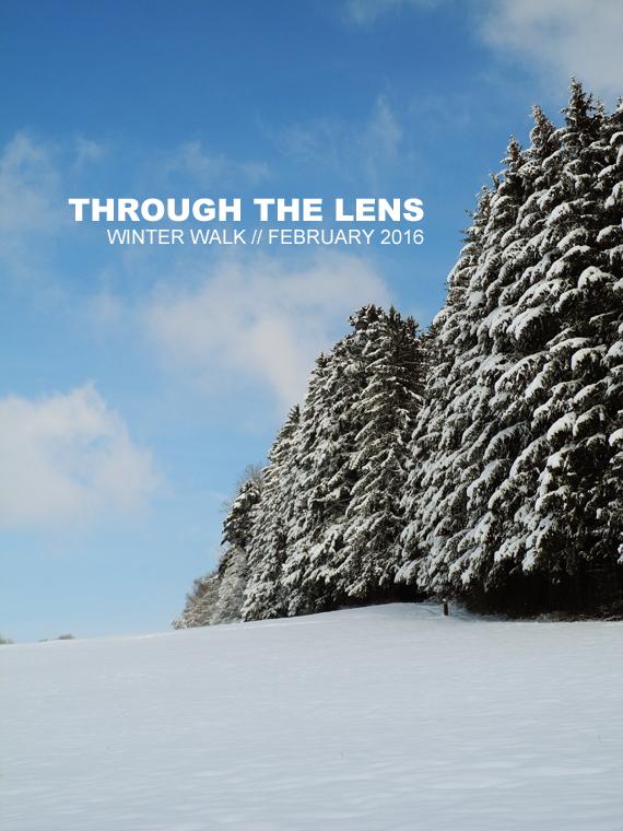 Create Share Love | Through The Lens - winter walk