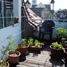 Balcony Garden 2014